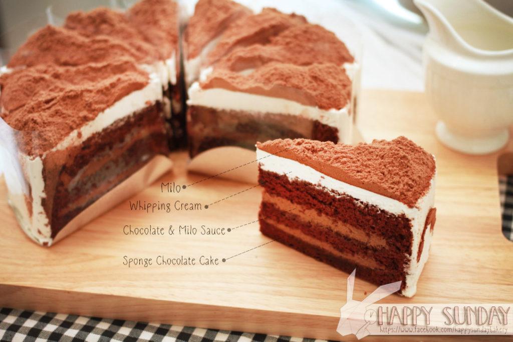 MILO VOLCANA CAKE